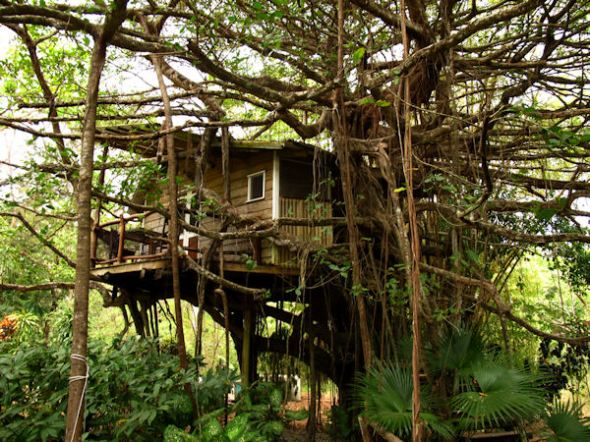 Tree house mal pais costa rica elliott easterling for Tree house costa rica